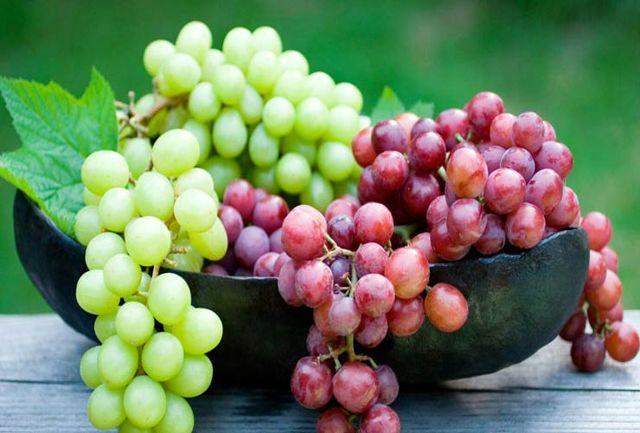 با خوردن هسته این میوه سرطان را شکست دهید