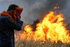 تجهیزات مکانیزه مهار آتش در منطقه حفاظت شده پرور وجود ندارد