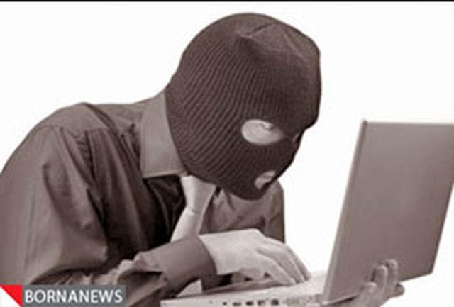 سایبر تروریسم غوغا می کند