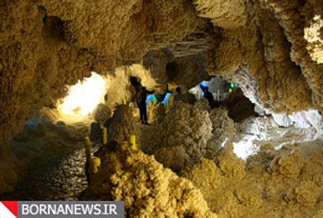 تلفیقی از باغهای مرجانی و تودههای گل کلمی/ این غار رشد میکند