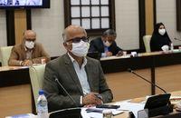 ۵۰ میلیون یورو سرمایهگذاری خارجی در بوشهر انجام شد