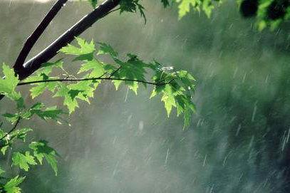 باران و باد شدید در راه تهران