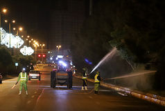 عملیات سمپاشی فضای سبز قزوین ادامه دارد