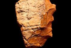 کشف نشانه های حضور انسان اولیه در بندر عباس