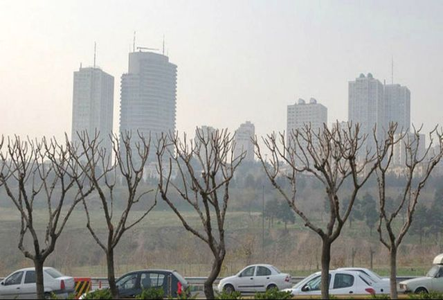 لزوم ادغام سازمانها و شرکتهای محیط زیستی در شهرداری تهران/ موازی کاریها مانع عملکرد موثر
