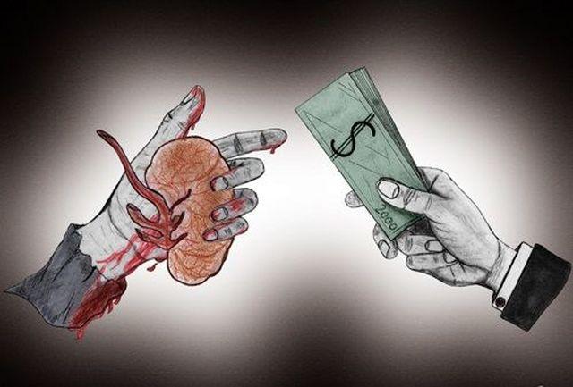 دستور توقیف سایت ها و شبکه های مجازی خرید و فروش اعضای بدن
