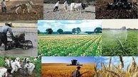 رشد 45 درصدی صادرات محصولات کشاورزی از آذربایجان شرقی