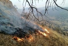 چهار هکتار از مراتع قزوین در آتش سوخت