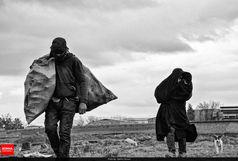 ۲۷۳ معتاد متجاهر در استان اصفهان جمع آوری شدند