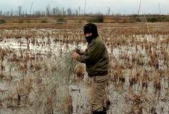 جمع آوری تور هوایی شکار پرندگان در لاهیجان