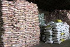 کشف حدود ۵۵ میلیارد ریال برنج احتکار شده در باوی