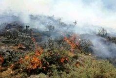 مهار آتش سوزی کوه حاتم در بهمئی