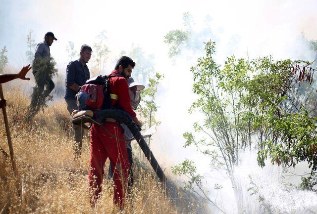 آتش سوزی درعرصه های طبیعی گچساران مهار شد