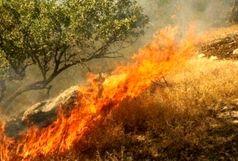 آتش سوزی جنگل ها به خرم آباد رسید