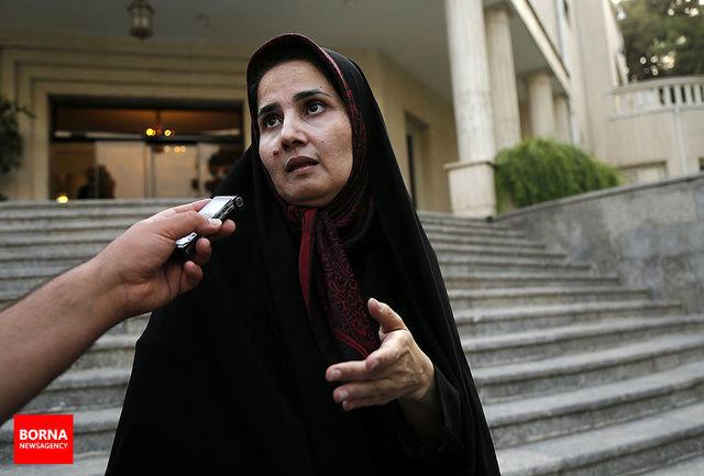 برخی برای سرمایهگذاری در ایران بیش از تحریمها از نظام حقوقی گله دارند