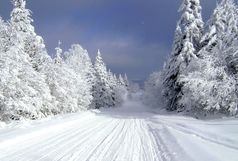 رییس سازمان هواشناسی: زمستان سختی در راه است