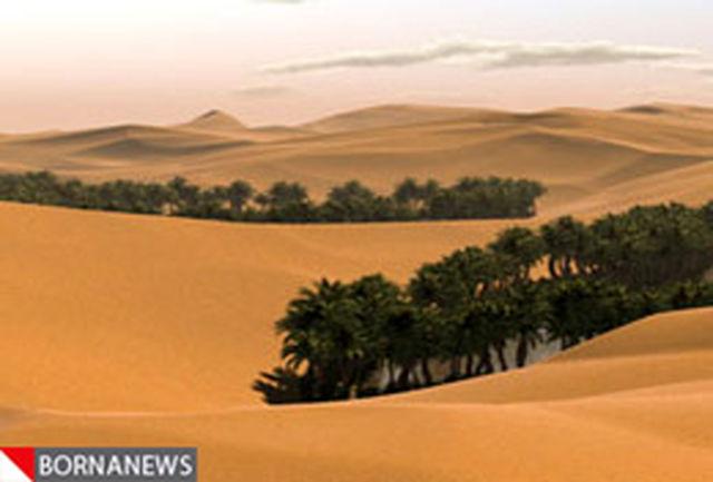 عملیات بیابانزدایی در 800 متراز اراضی عراق به صورت پایلوت انجام میشود
