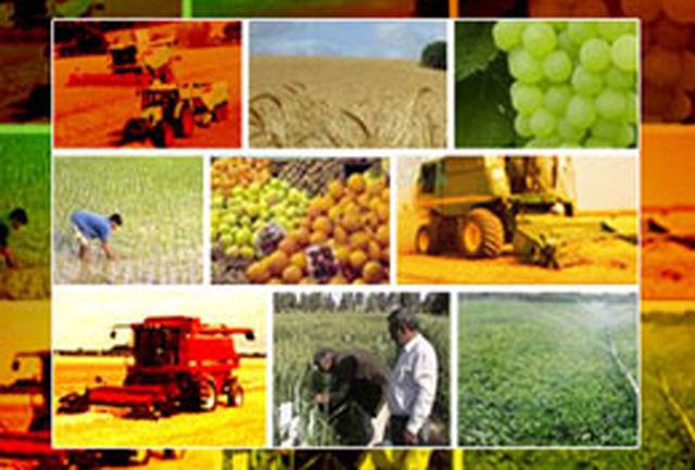 اختصاص 41 میلیون لیتر سوخت به بخش کشاورزی خوزستان