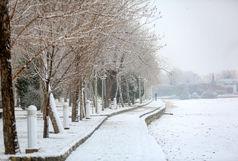 پایتخت ؛ آماده بارش برف ۱۰ سانتیمتری