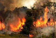 آتش سوزی گسترده در چیتگر