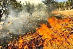 روشهای پیشگیری و مقابله با آتش سوزی جنگلهای استان ایلام