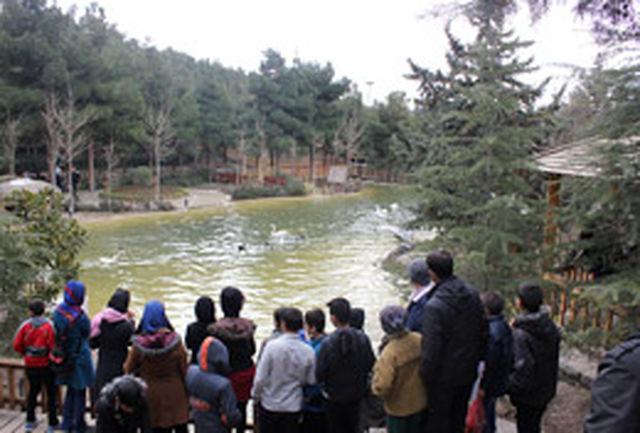 دانش آموزان تهرانی از باغ پرندگان دیدن کردند