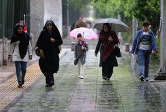 هوای کشور سرد می شود/بارش باران در برخی از استان های کشور