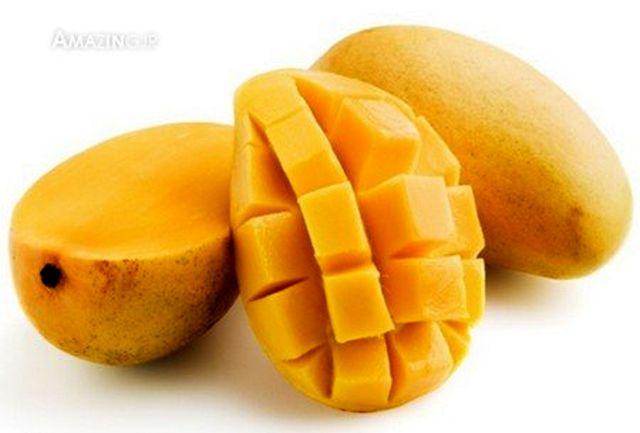 با میوه های گرمسیری هرمزگان بیشتر از گذشته آشنا شوید