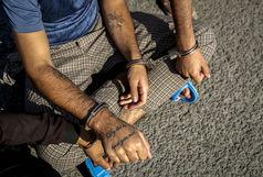 اعتراف سارقان به 68 فقره سرقت درون خودرو در شیراز