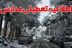 امروز یکشنبه 29 دی ماه تمامی مدارس تهران تعطیل شد