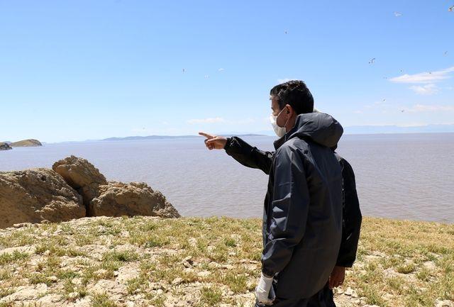 بازدید استاندار آذربایجان غربی از جزایر پارک ملی دریاچه ارومیه