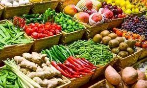 خرید حمایتی گوجه برای کنترل نرخ بازار در صورت افت قیمت