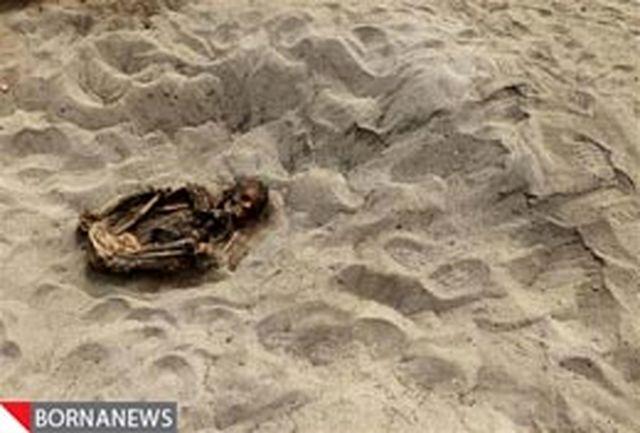 اسکلت 800 ساله بچه قربانی شده کشف شد + تصویر