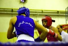 تیم بوکس شایان، قهرمان رقابت های بوکس خراسان جنوبی شد