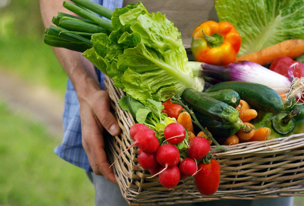 این سبزیجات را حتما در رژیم غذایی تابستان خود قرار دهید