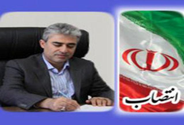 مشاور ارشد استاندار فارس منصوب شد