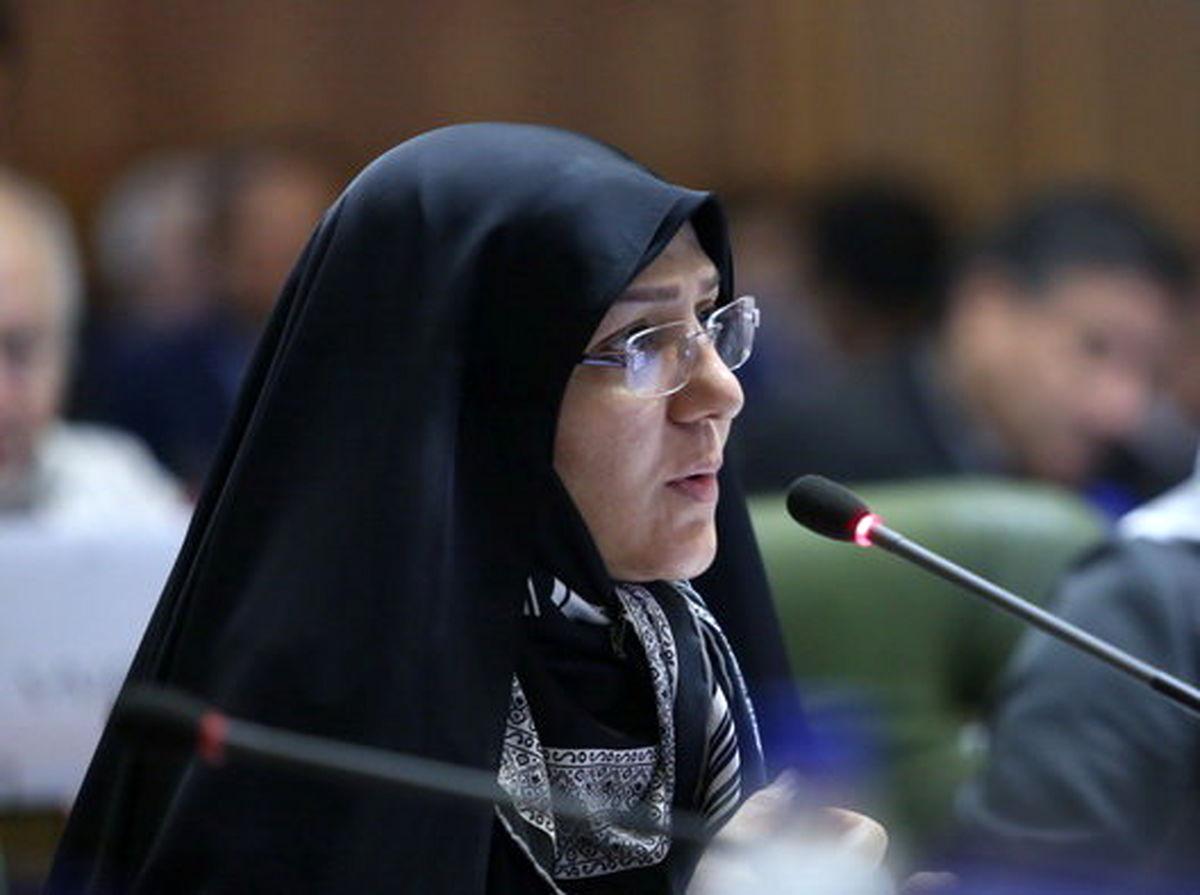 چگونگی حفظ میراث طبیعی تهران در دستور کار شورای شهر