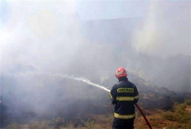 آتش سوزی پارک های جنگلی سنندج 95 درصد کاهش داشته است