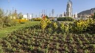 سرانه فضای سبز کرج بالاتر از استانداردها است/ آغاز احداث پارک دوستدار کودک از مهرماه