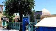 مرمت گنبد شاهزاده حسین(ع) و پل تاریخی مریانج