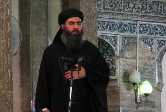 آخرین خبرها از سرکرده داعش