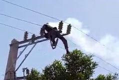 جان باختن یک مامور اداره برق در حین کار