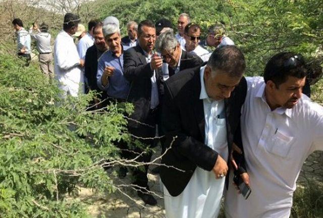 بازدید رئیس کمیسیون آب وکشاورزی مجلس از مناطق آلوده در کنارک