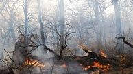 1400 آتشسوزی در جنگلها و مراتع ایران در سال جاری