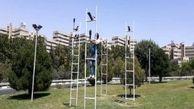 نصب دوباره المان کلاغها در محله اکباتان