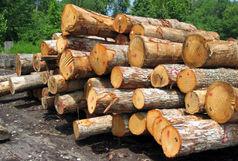 کشف ۱۵ تن چوب جنگلی قاچاق در ملایر