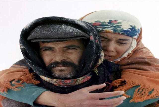 «جاده»، شاهکاری که ییلماز گونِی در زندان فیلمنامهاش را نوشت و کارگردانی کرد