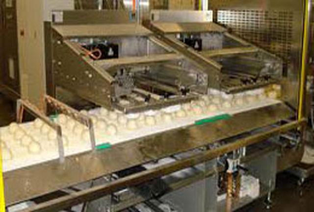 فقدان سرمایه کافی عامل انصراف از احداث کارخانه تولید نان صنعتی در استان
