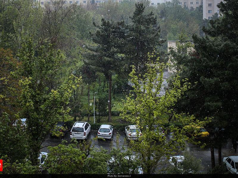 بارش باران در 9 استان کشور