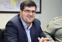 مجوزی برای تکثیر گوزن در محدوده شهرستان تهران صادر نشده است